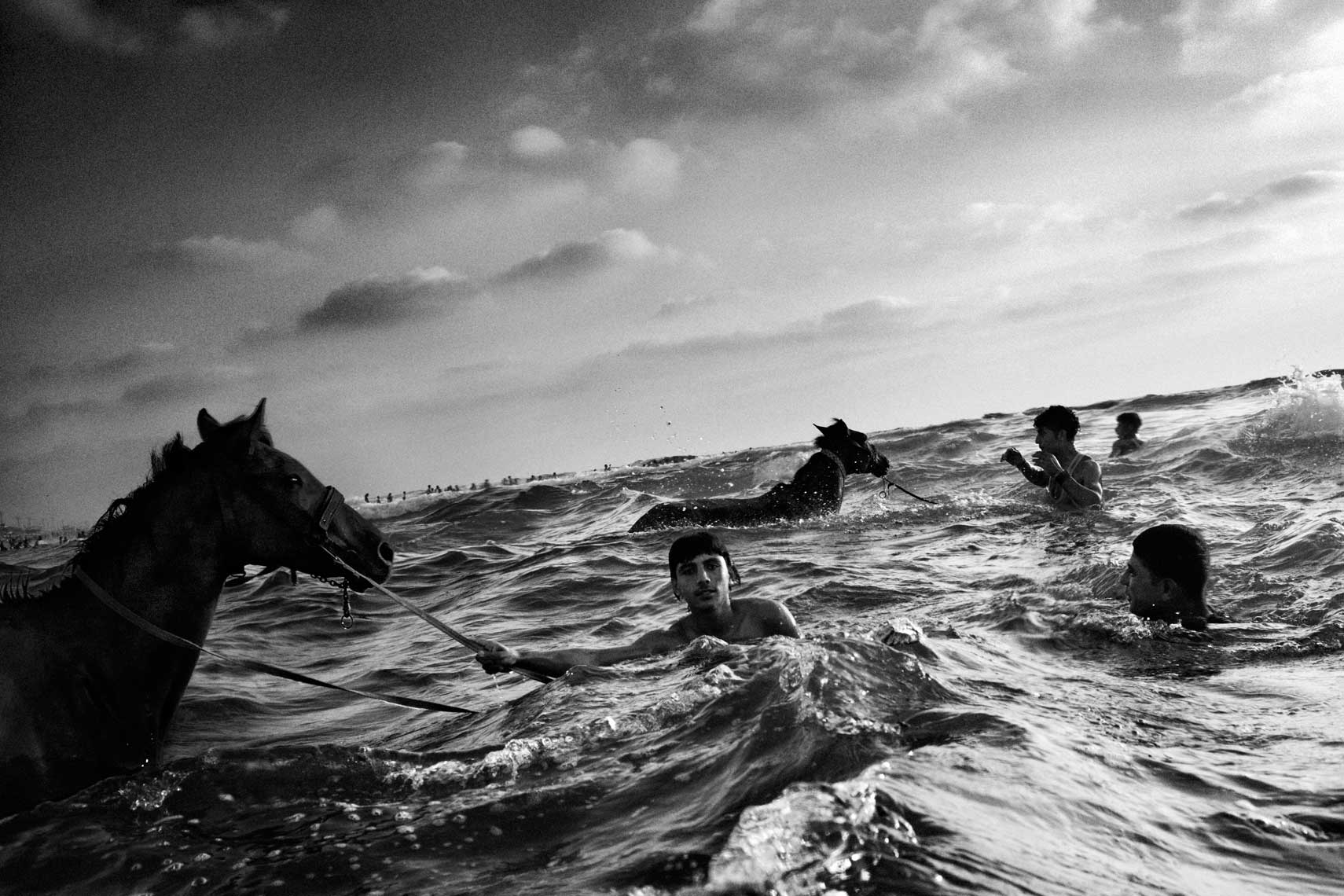 Gaza Horses and Sea
